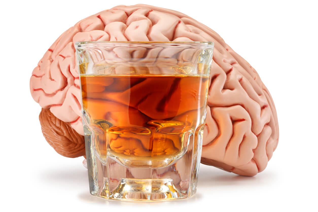 Campaña de consumo controlado de alcohol, Capítulo 2 ¿El alcohol y el cerebro?
